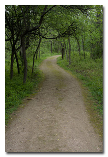 a scenic portion of of one of the park's walking trails -- click to enlarge